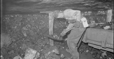 coal miner 1