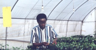 7.1.FoodDr.RobertMwanga