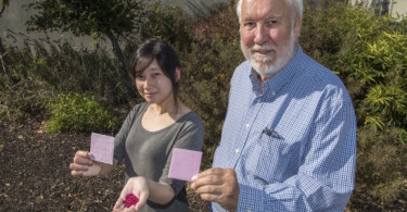Research Assistant Sharon Chen and Physicist Paul Berdahl hold up their prototype coating made from ruby powder and synthetic ruby crystals at Lawrence Berkeley National Laboratory on Wednesday, September 7, 2016 in Berkeley, Calif. 09/07/16